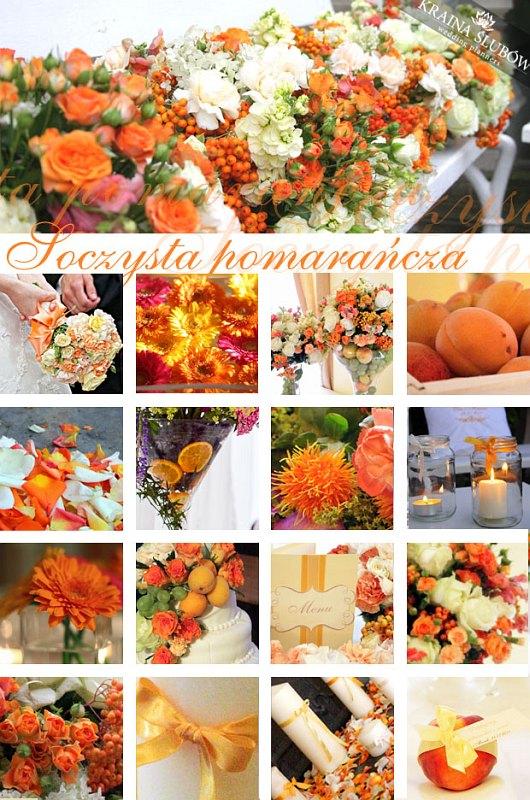 Kolor Tygodnia Pomarańcz Kraina ślubów